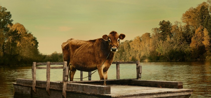 FIRST-COW-KELLY-REICHARDT